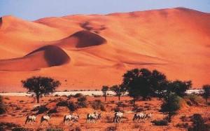 Namibia - Botswana Reisen