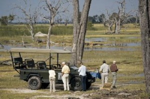 Botswana - Pirschfahrt - BOT_REG_1060_20080819_SS